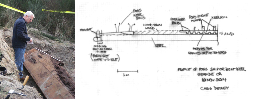 Photo and drawing of possible ship or boat keel in Seaside, Oregon, Nov 2014. Courtesy of Christopher Dewey (pictured)