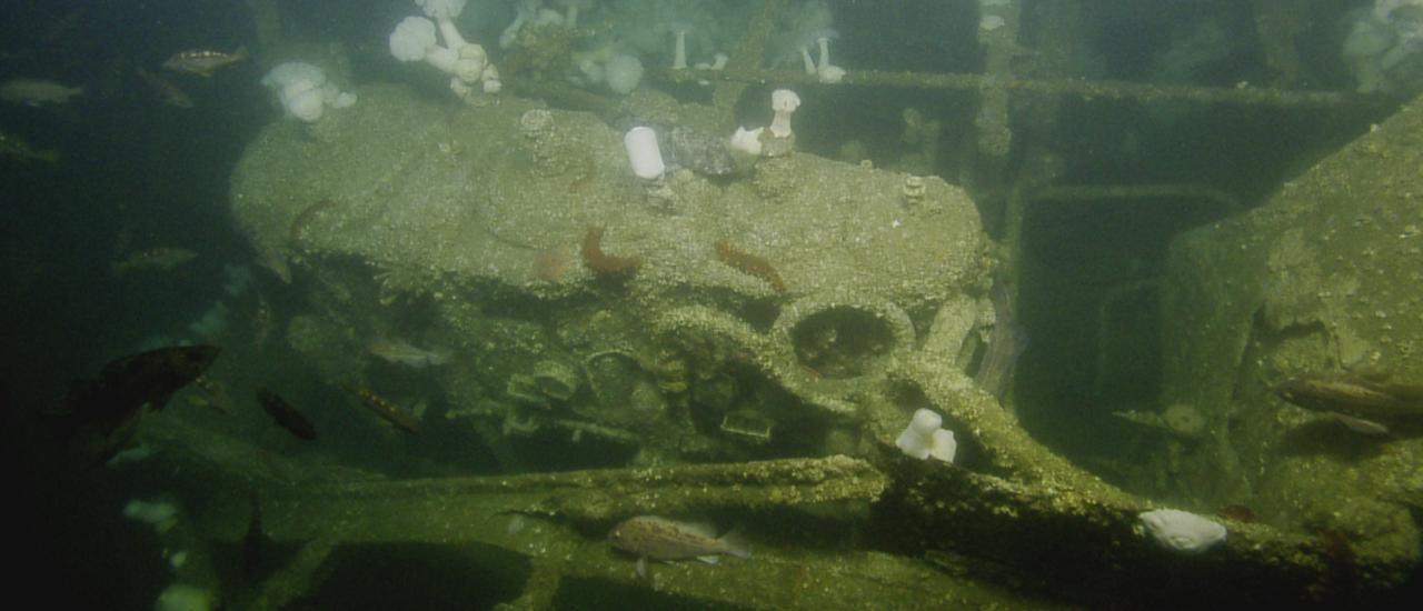 Columbia River Shipwreck Conference 2020